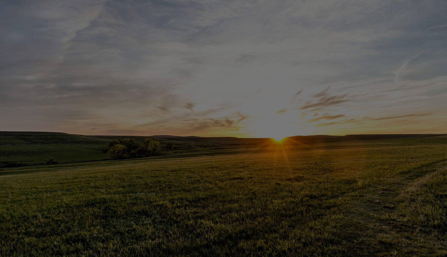 Large open farmland or field at sunset